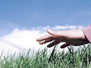 Assemblea annuale Assogasliquidi: focus sulle tematiche della piena legalità e del rispetto dell'ambiente